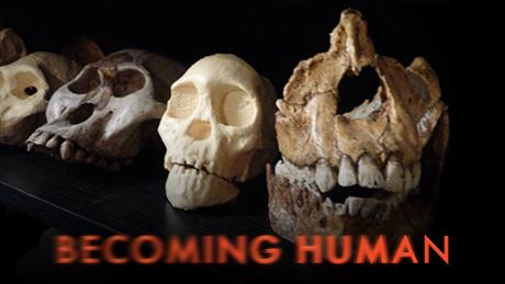 becoming-human-vi