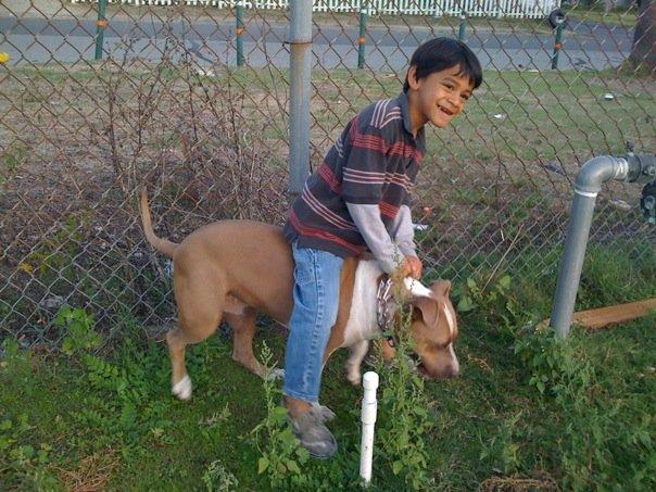 Child Rides Maggie