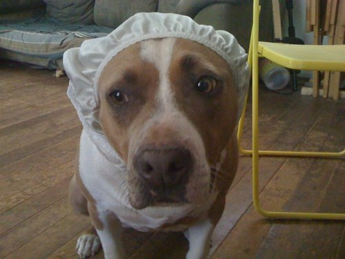 Maggie in shower cap