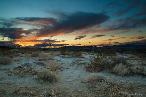 Sunrise coachella